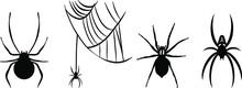 Vectors Of The Spiders - Spiderweb