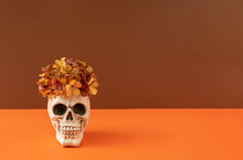 Skull With Autumn Flowers Against Orange And Brown Background. Minimal Halloween Concept. Copy Space.