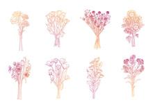 Set Of Elegant Outline Flower Hand Drawn Sketch Illustration