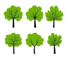 Set Green Trees. Vector Illustration