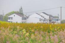 Rape And Rural Scenes