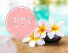 Have A Nice Day Card Idea, Beautiful Fresh Plumeria Flower Over Blurred Pool Water Background, Summer And Spring Season Concept