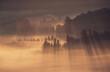 Jesienne mgły - Beskidy - Istebna