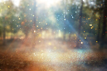 Blurred Abstract Photo Of Light Burst Among Lonely Tree And Glitter Golden Bokeh Lights