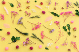 Top view image of pink, purple and green flowers composition over pastel yellow background .Flat lay