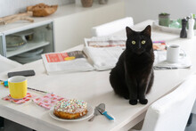 Black Cat Sitting By Cake On White Dining Table At Home