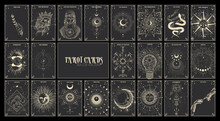 Vector Illustration Set Of Moon Phases. Different Stages Of Moonlight Activity In Vintage Engraving Style. Zodiac Signs, Tarot Cards