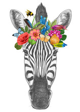 Portrait Of  Zebra With A Floral Crown.  Flora And Fauna. Hand-drawn Illustration, Digitally Colored.
