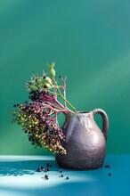 Studio Shot Of Jug With Elderberries And Rose Hips
