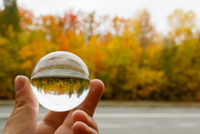 Autumn Landscape. A Man's Hand Holds A Crystal Ball, In Which The Image Of Red-yellow-green Trees, Shimmering With Gold, Is Inverted. Beautiful Autumn. Colors Of Autumn. Gray Sky.
