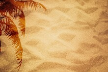 Sand Texture. Sandy Beach With Palm Shadow For Background.