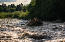 Sun Shines On Dirty Flood Water Flowing Rapidly In River, Taking Some Small Trees With Roots