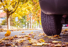 Beware Of The Risk Of Slipping On The Road In Autumn
