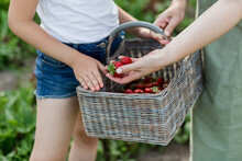 Mother And Daughter Holding Basket Of Strawberries