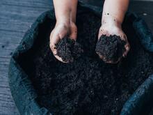 Kid Showing Soil In Hands Against Flower Pot