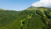 Green Head Of A Mountain In Summer With Trees, Grass, Ski Run