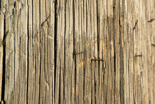 Closeup Of An Electric Pole In An Evening Light. Wood Is Weathered, And There Are A Few Staples Left From Already Removed Advertisements And Announcements