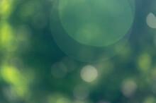 Green Bokeh Nature Shiny Background