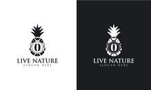 Pineapple Icon Minimalist Letter O Logo Design Vector.