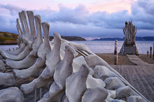 A Fragment Of A Whale Skeleton On The Shore Of The Barents Sea In Russia