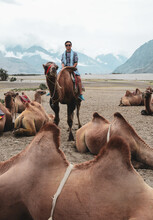 Camels Await Visitors In The Nubra Valley
