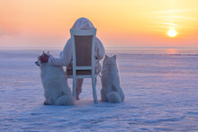 A Woman Sits On A Chair With Two Northern Dogs In Winter On Ice During Sunset On A Pond