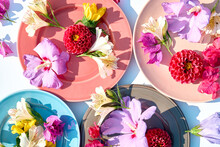 Colorful Plates With Different Flowers, Close Up Look