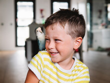Smiling Boy With Small Domestic Parrot In The Shoulder