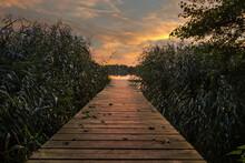 Sonnenuntergang, Abendstimmung, Herbst, See, Stille, Ruhe, Ruhiger Ort, Schilf, Steg, Holzsteg, Natur, Landschaft,