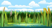 Landscape With A Swampy Shore Of A Lake Or River. Coast Is Overgrown With Grass, Reeds And Cattails. Water With Water Lily Leaves. On Background Of Coniferous Forest. Wild Pond. Vector