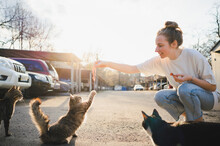 Smiling Woman Feeding Homeless Cat On Street