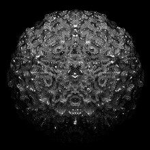 3d Render Of Monochrome Black And White Abstract Art With Surreal Alien Flower In Fractal Spherical Structure With Small Balls Pimples On Surface In Transparent Glossy Plastic Material On Black Back