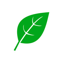 Green Natural Leaf. Leaf Icon Shapes In Modern Flat Style