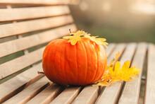 Big Orange Pumpkin On A Bench In An Autumn Park. Halloween Props