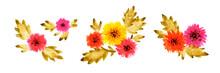 Yellow Flowers Set On White Background