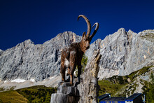 In The Alps, At The Top Of The Dachstein 3000 M.