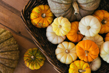 Assorted Pumpkins On Wooden Table