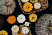 Assorted Pumpkins On Black Surface