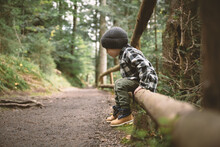 Small Kid In A Plaid Shirt And Gray Hat In The Forest. Childhood With Nature Loving Concept