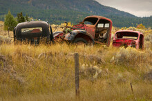 Ranchland Abandoned Trucks. Old Abandoned Trucks In The Pacific Northwest.