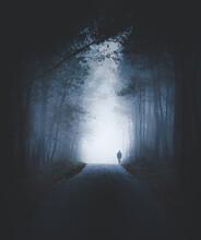 Persona Solitaria Paseando En La Niebla