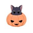 Słodki czarny kot chowający się w wydrążonej dyni. Halloween. Cukierek albo psikus! Uroczy ręcznie rysowany mały kotek. Ilustracja wektorowa.