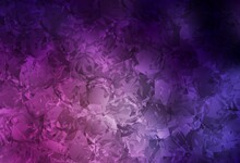 Dark Pink Vector Natural Backdrop With Roses, Flowers.