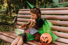 Cute Little Girl In A Halloween Green Witch Or Fairy Costume Is Sitting On A Bench On The Street With A Lantern Jack, A Basket For Sweets In Her Hands. Autumn Concept. High Quality Photo