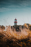 Beautiful warm summer evening sunset light of a red brick lighthouse with orange grass and coastline views. Perfect sunny and happy day at the coast. German Baltic Sea, Fehmarn,  Schleswig-Holstein