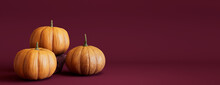 Contemporary Autumn Banner With A Collection Of Pumpkins On Burgundy Background.