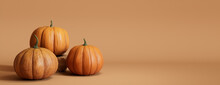 Contemporary Fall Banner With A Collection Of Pumpkins On Warm Brown Background.