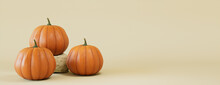 Contemporary Fall Banner With A Collection Of Pumpkins On Cream Background.