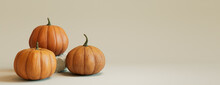 Three Pumpkins On A Grey Colored Background. Autumn Themed Banner With Copy-space.