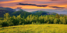Forest On The Grassy Meadow In The Forenoon. Beautiful Rural Landscape In Summer. Mist Spreads From The Distant Mountains Above The Treetops Beneath A Wonderful Sky With Clouds